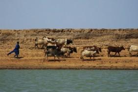 Mali. By Siel