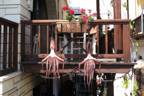 Hora Sfakion - drying octopusses