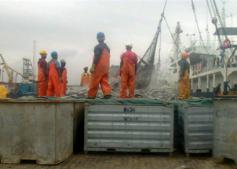 Tema pier during tuna offloading