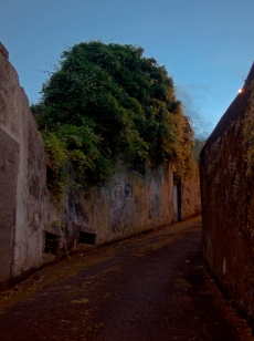 Climbing the small streets of Horta