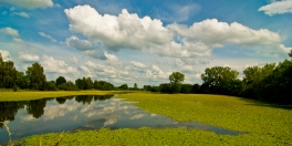 Yellow Lake, Belgium ©Siel Wellens