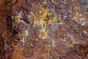 Iron colours